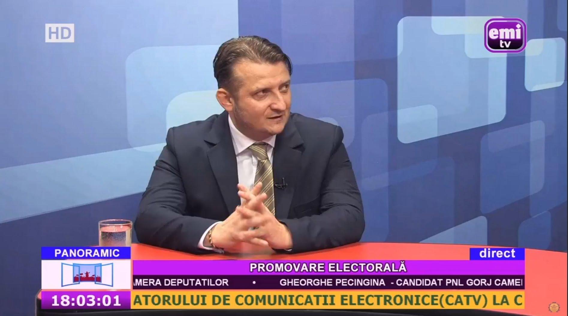 """Atac dur la adresa senatorului PSD, Cristi Rujan. Pecingină: """" Rujan, analfabet funcțional din punct de vedere economic"""""""