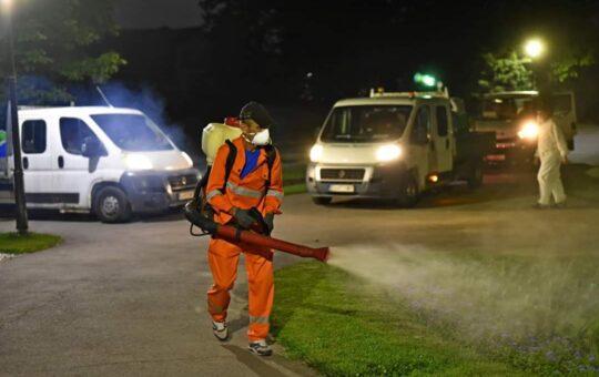 Campanie de dezinsecție în Craiova