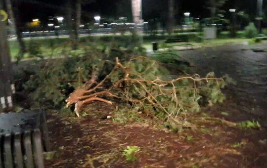 Furtuna a făcut ravagii în Cluj-Napoca